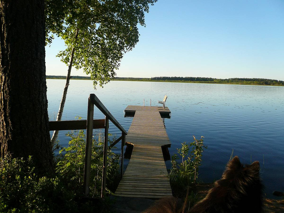 mokki-cottage-4-jarvi-lake