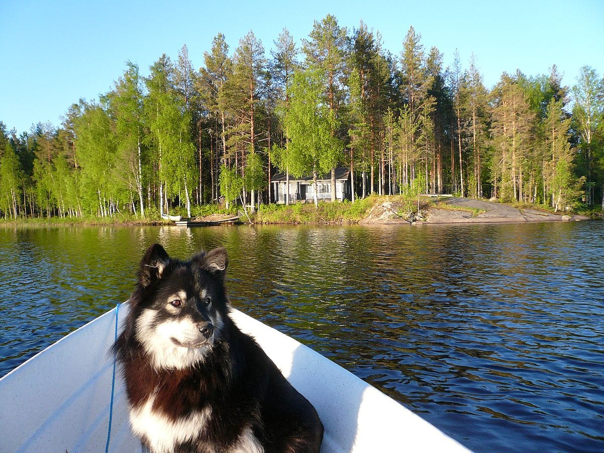 soutu_rowing_mokki_cottage_lake