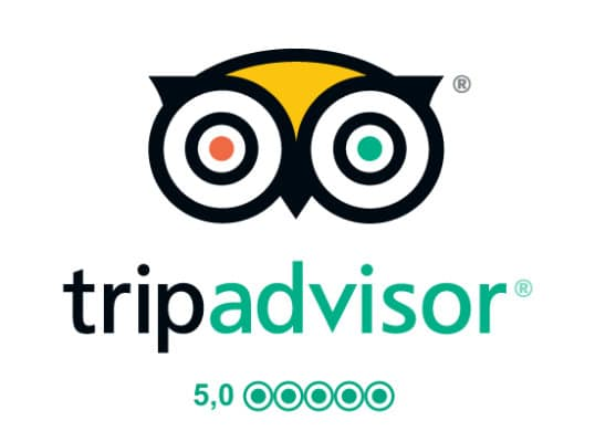 tripadvisor-logo-50